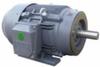 Three Phase-Aluminum-NEMA Premium-TEFC -- GR3-AL-TF-143T-2-B-D-1.5 - Image