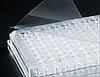 Corning Universal Optical Microplate Sealing Tape -- sc-05-539-107