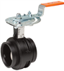 Vic™-300 MasterSeal™ Butterfly Valve -- Series 761