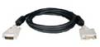 Tripp Lite Single Link TDMS display cable - 10 ft -- P561-010