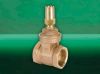 """D237 Gate Valve (1/2"""" to 3"""") -- View Larger Image"""
