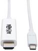 Between Series Adapter Cables -- 95-U444-006-HWE-ND - Image
