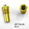 Thermostatic Probe -- B12B