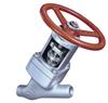 Cast Y-pattern Globe Valve -- SICCA 900-2500 GLC - Image