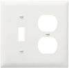 Combination Openings, 1 Toggle Switch & 1 Duplex Receptacle -- TP18W - Image