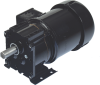 247 Series 3-Phase Inverter Duty Gearmotor 230V -- 017-247-0005 - Image