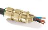 E1FX/M Cable Gland