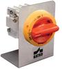 Motor Disconnect Switches -- OKA/KU LK10 1.V Y/R -- View Larger Image
