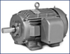 Definite Purpose AC Motor -- M25552-58