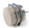 High Temperature Inductive Proximity Sensor -- IN50-80HTPO-160