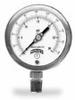 NACE Gauge, 30 psi -- EW-68610-20