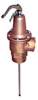 Temperature and Pressure Relief Valve -- 340, 340X -- View Larger Image