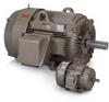 Crusher Duty AC Motor, Three Phase, Enclosed, 10 HP - Image