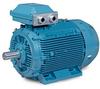 Permanent Magnet AC Motor, IEC Frame