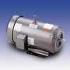 AC Motor TEFC