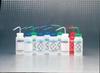 Wash Bottle,Ethyl Acetate,16 Oz,Pk 6 -- 3ZFH9