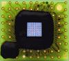 Avalanche Photodiodes (APD) with Enhanced NIR Sensitivity,900 nm, Series 9 Hybrid -- 500756 -Image