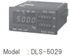 Digital Indicator -- DLS-5029
