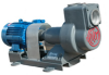 Horizontal Shaft Electric Pump -- PLDa Series