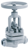 Flanged or Weld End Globe Valve -- NORI 160 ZXL/ZXS - Image