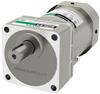 Induction Gear Motor -- 5IK60UC-60A -Image